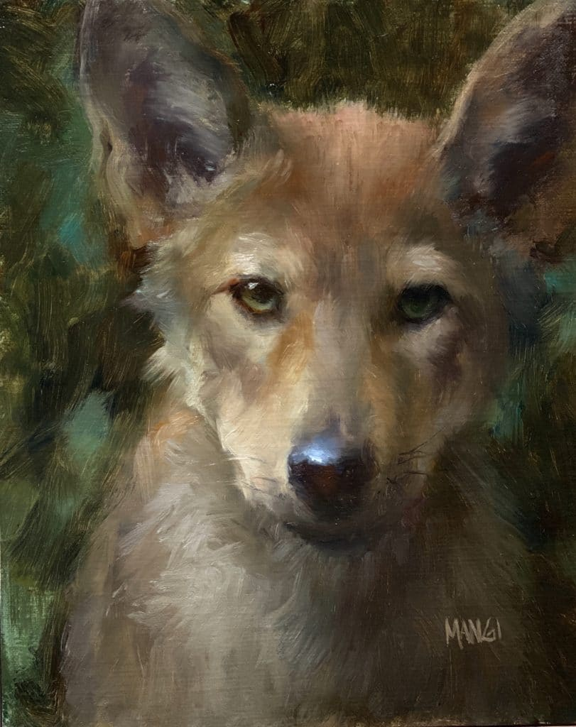 Art inspiration - how to paint animals